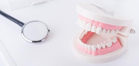 歯の模型と虫眼鏡